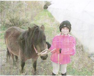 foto caballo.jpg